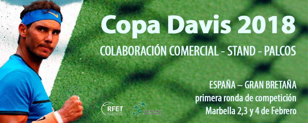 banner copa Davis